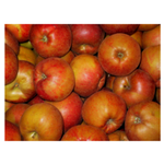 Apples Fuli Juicing Case Only