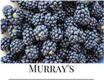 Organic Berries Blackberries Murray